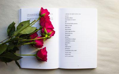 Día del Libro: cultura, princesas y dragones